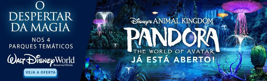 HOME ECO - Walt Disney World - EconoTravel