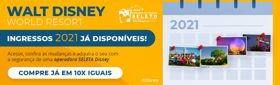 Home Econotravel - Disney